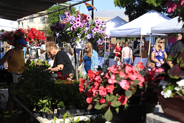 Patrons browse flowers on display at the 2019 Homewood Artisan Street Fair. The event was canceled in 2020 because of the pandemic but is one of several festivals that will return this year, with appropriate pandemic adjustments in place. (Chronicle file photo)