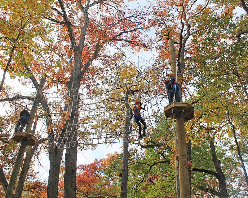 Teens move through the oaks canopy on the high ropes course at Irons Oaks. (Provided photo/H-F Park District)