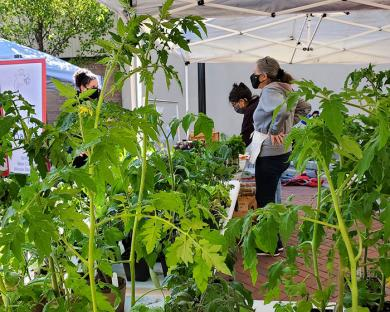 Nancy Spiegel and Kate Duff of Homewood Kitchen Garden talk to a patron on Saturday. Duff is also the market manager. (EC)