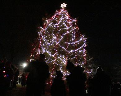 Crowds gather around the community Christmas tree for photos after Santa switched on the lights.