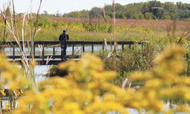 A visitor to the preserve pauses on a trail bridge to take in the peaceful scene.