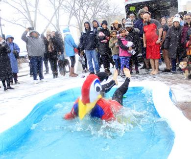Lizz Molina, in her parrot costume, takes a backwards plunge into the frigid pool.