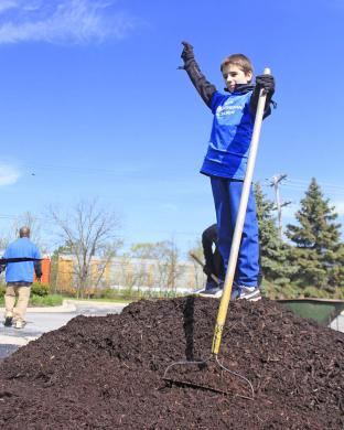 """Martin Suchor is """"king of the (mulch) hill"""" while helping with Park Pride duties on Saturday. (EC)"""