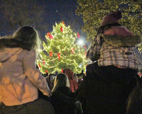 Shoulder-riding youngsters gaze upon the just-lighted Christmas tree in Irwin Park.